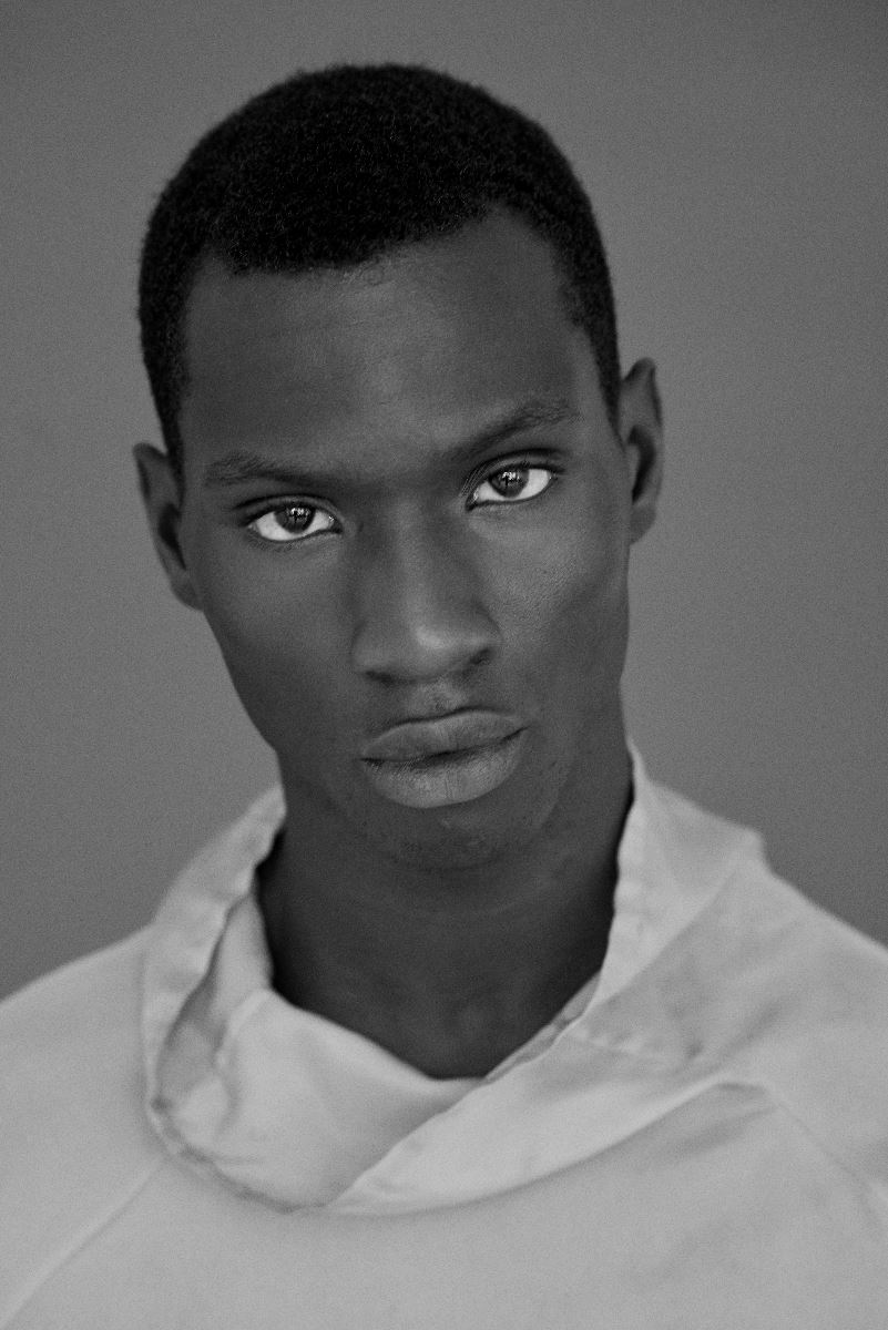 D1 Models Adonis Bosso